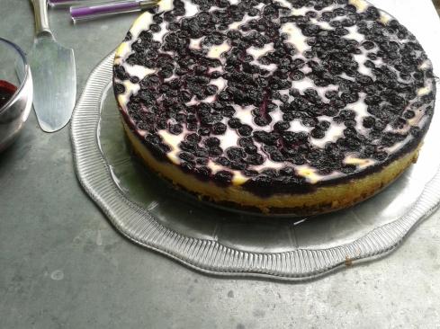 cheesecake myrtille2 (2)
