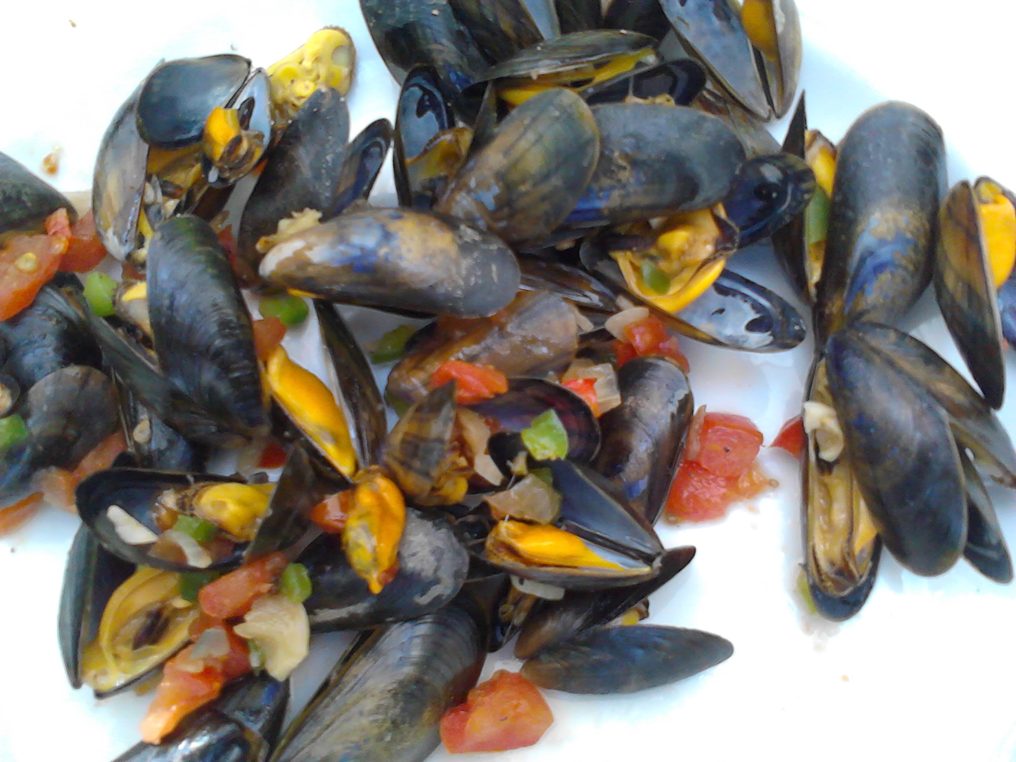Moules la catalane la plancha la cuisine de bulle for Poisson a la plancha