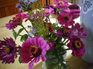 fleurs d'automne1