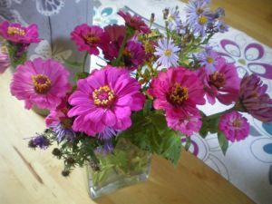 fleurs d'automne2