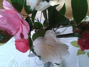 bouquet camelia