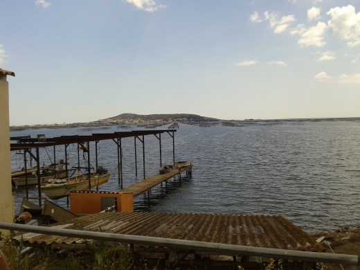 Bassin de Thau