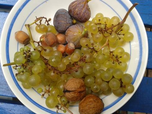 clafoutis figues raisins noix