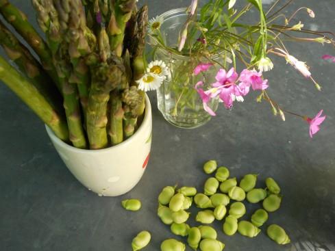 asperges fèves fleurs