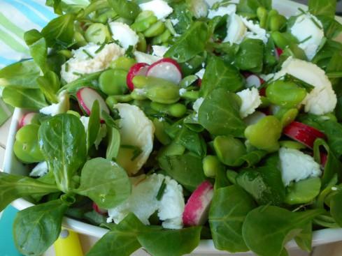 salade fèves radis mâche chèvre.2